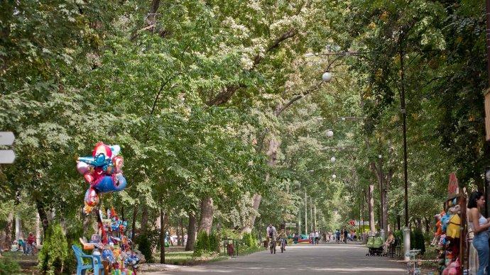 В Чистяковской роще пройдет фестиваль «День знаний»