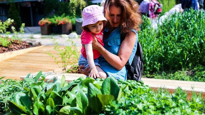 В Ботаническом саду МГУ открывается «Сенсорный огород»