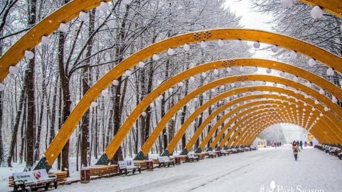 Зимняя интерактивная программа в парке «Сокольники»