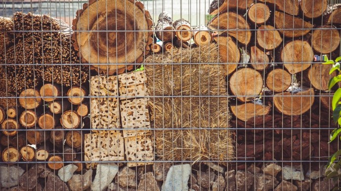 В «Аптекарском огороде» открывают первую в Москве площадку экорециклинга органических отходов