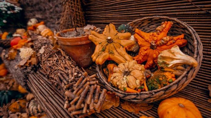 Фестиваль «Если любишь тыкву» на Даниловском рынке