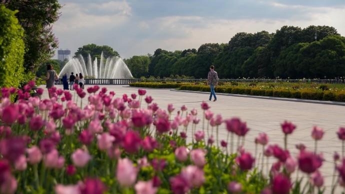 После карантина в Москве открылись парки и скверы