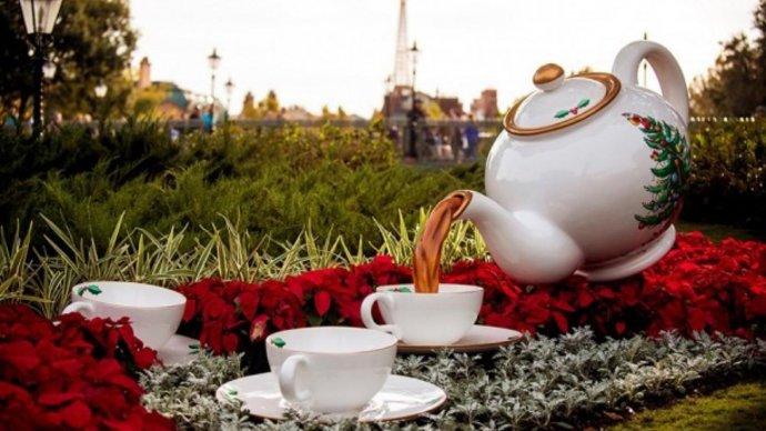 В «Сокольниках» пройдет фестиваль кофе и чая