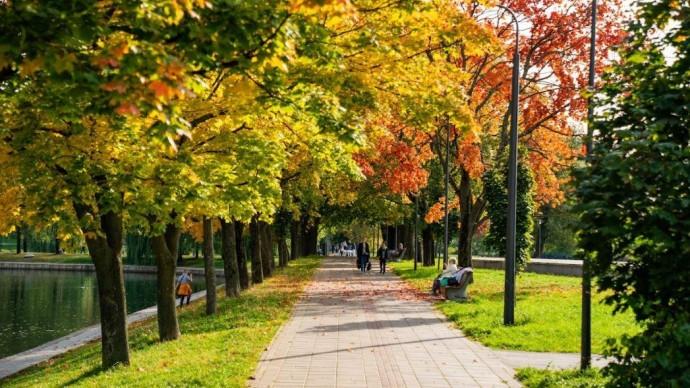 В парках Москвы состоятся мастер-классы и онлайн-занятия