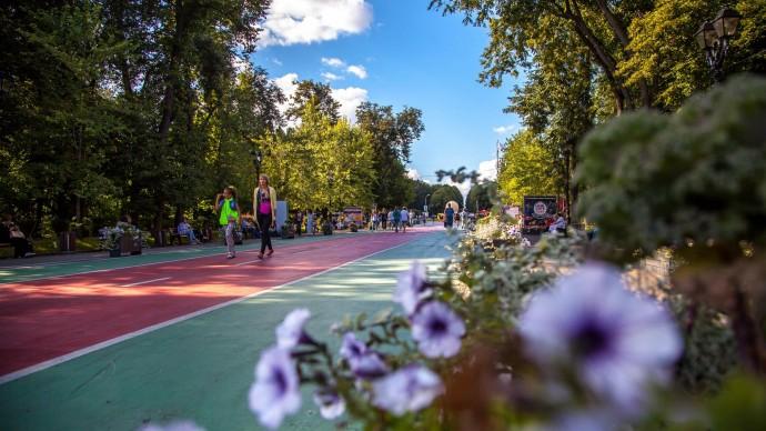 В «Сокольниках» устроят культурно-спортивный пикник