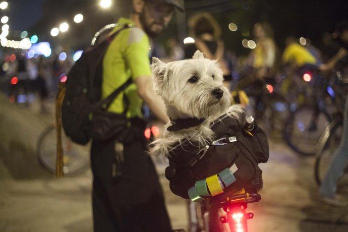 Фото: Второй ночной Московский велопарад