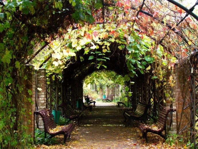 История парков: Императорский Ботанический сад
