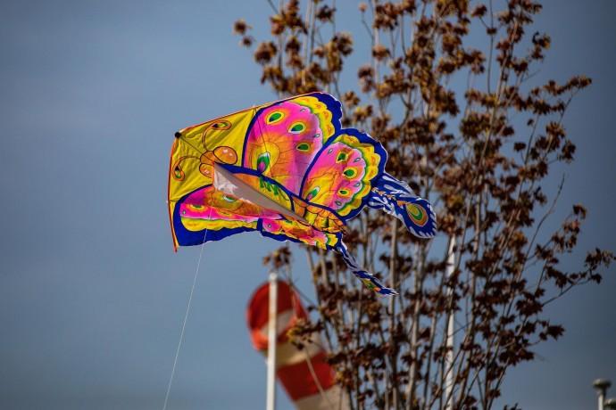 Фестиваль воздушных змеев на Ходынке: фоторепортаж ParkSeason