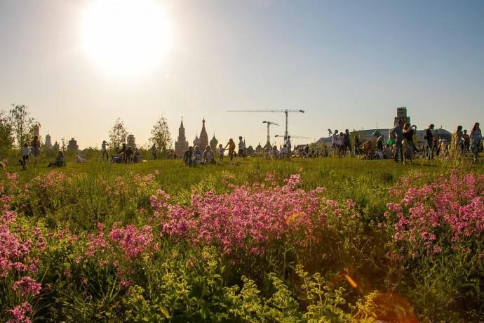 Весна из фотоархивов: вспоминаем май 2019 года