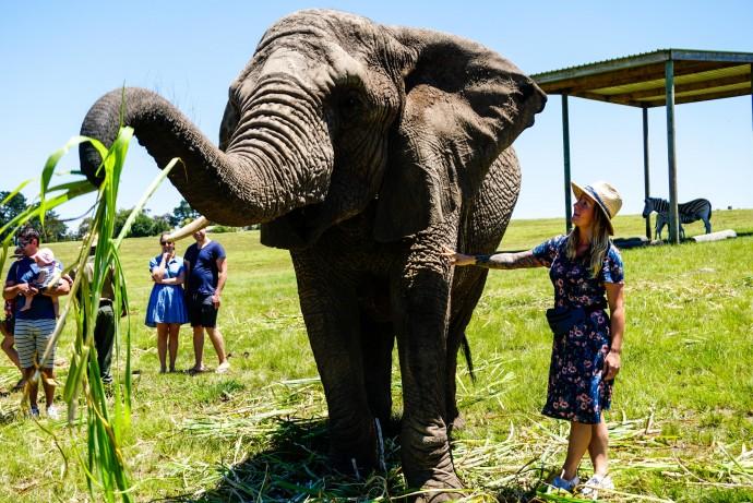 Как спланировать путешествие в Южную Африку?