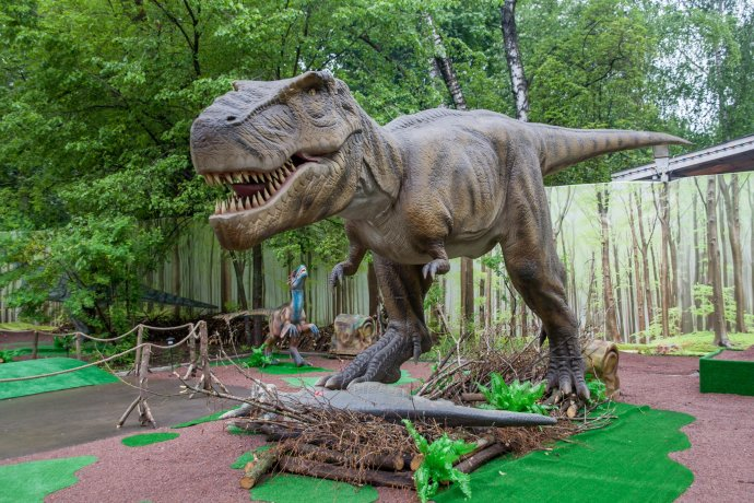 Фото: Выставка динозавров в парке «Сокольники»