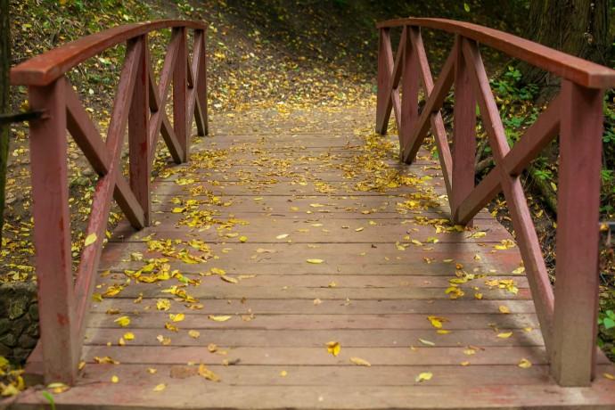 Уютные места для осенних прогулок