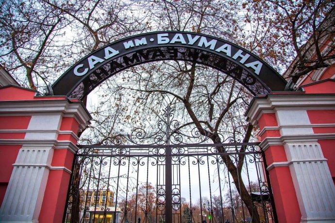 8 причин зайти в сад Баумана