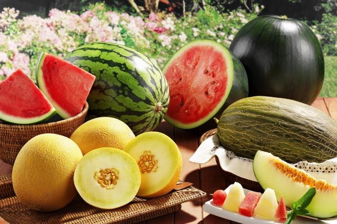 Как выбрать арбузы и дыни: советы ParkSeason