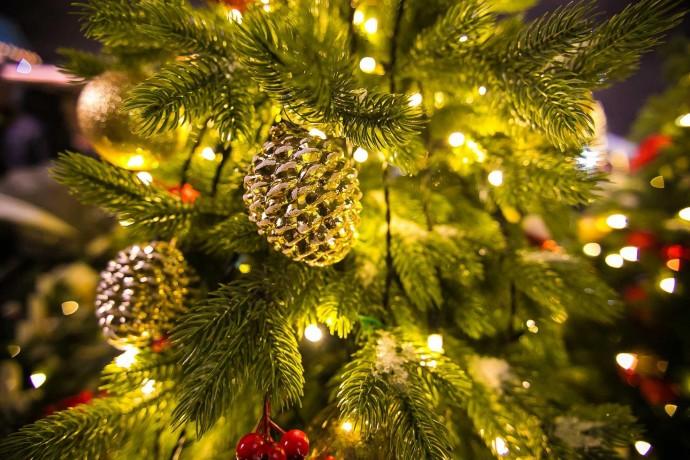 Где провести новогодние каникулы с ребенком в Нижнем Новгороде: афиша ParkSeason
