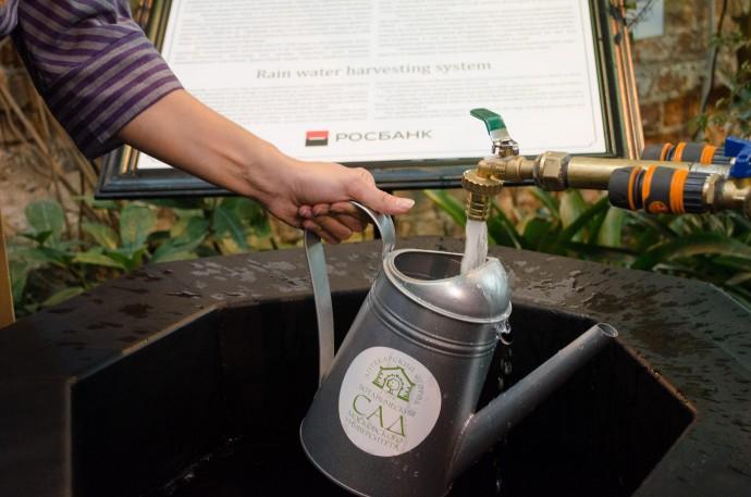 Уникальный случай: зачем «Аптекарскому огороду» поливать растения дождевой водой