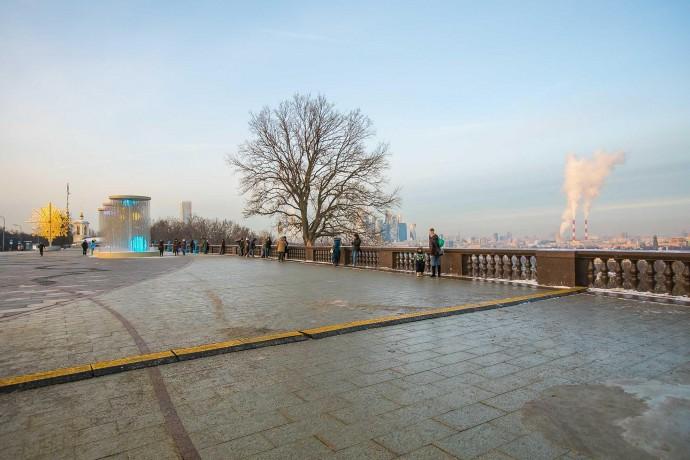 Зимняя прогулка по Воробьевым горам: фоторепортаж ParkSeason