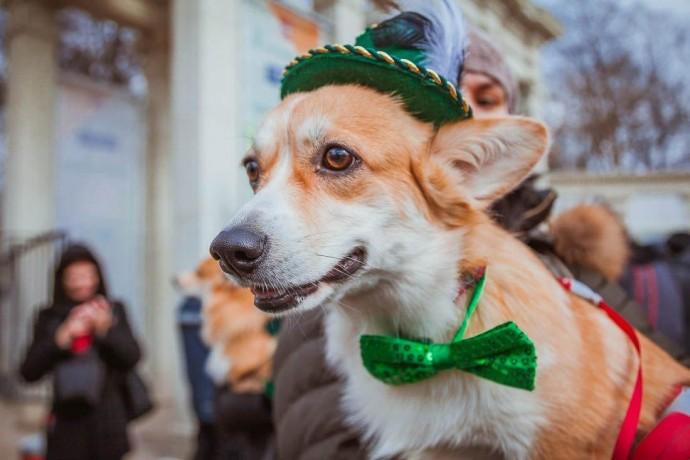 День Святого Патрика и другие события фестиваля Irish Week-2019