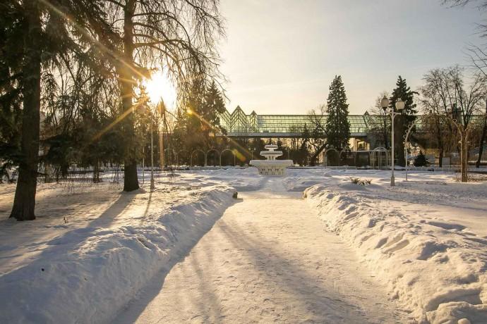 Парк Горького в феврале: месяц до закрытия катка, живая музыка и занятия для детей