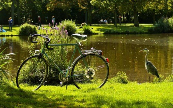 Лучшие парки мира: Вондельпарк в Амстердаме