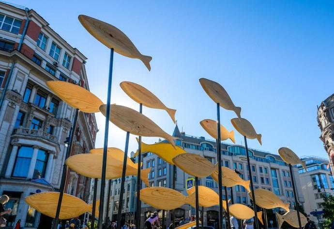 Рыбная неделя в Москве: гид ParkSeason