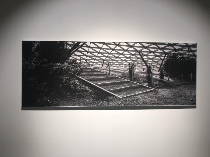 Парки Москвы на снимках Сергея Пономарева: фотовыставка «Москва. Великая пустота»