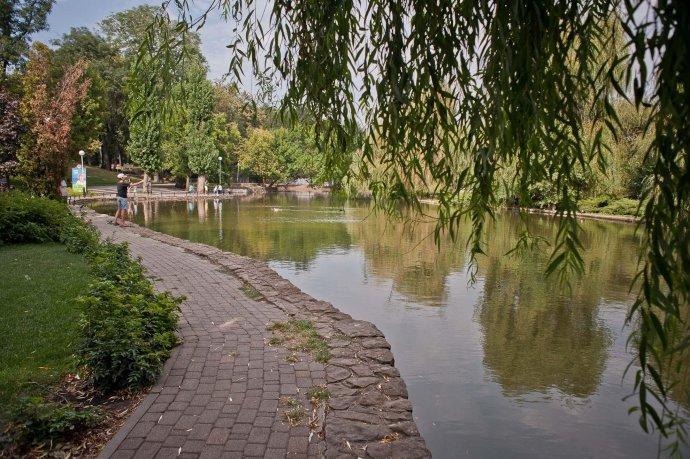 5 причин зайти в Городской сад