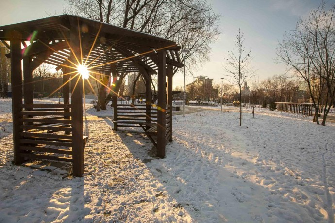 Фото: солнечные дни в парках Москвы
