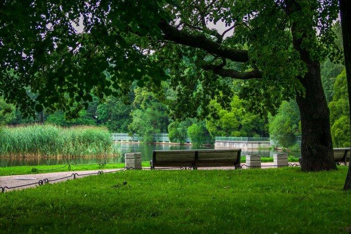 9 самых интересных парков Петербурга в черте города