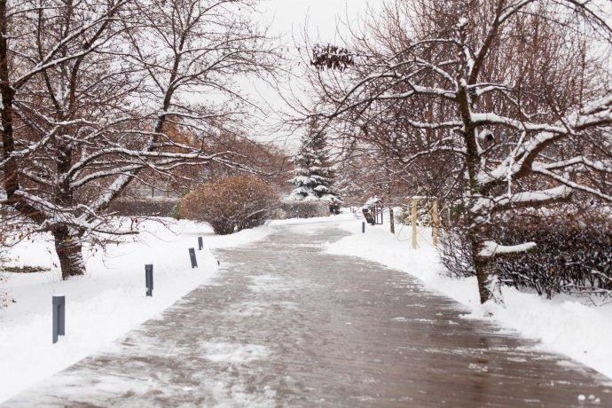 Фото: Зима в «Музеоне»