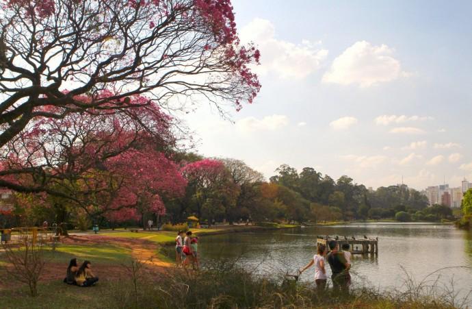 Лучшие парки мира: Ибирапуэра, Бразилия