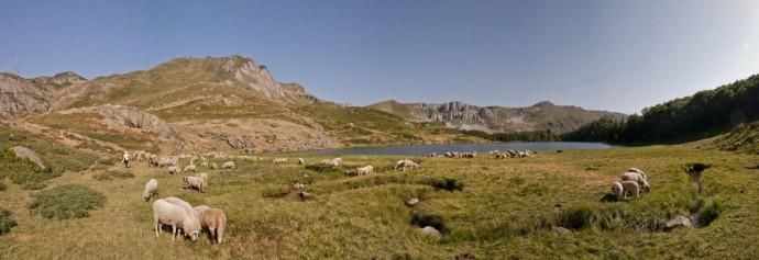 Лучшие парки мира: Биоградска-Гора, Черногория